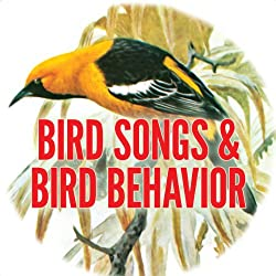 Bird Song and Behavior