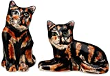 Rescue Me Now Tortoise Shell Cat Salt and Pepper Shaker Set
