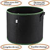 3 Gallon Grow Bags with Handles, Durable and Aesthetic. Honeforest Aeration Fabric Pots(5 Pack)- Ideal Plant Pots for Tomatoes, Peppers, Potatoes, Cucumbers, Beans, Onions, etc