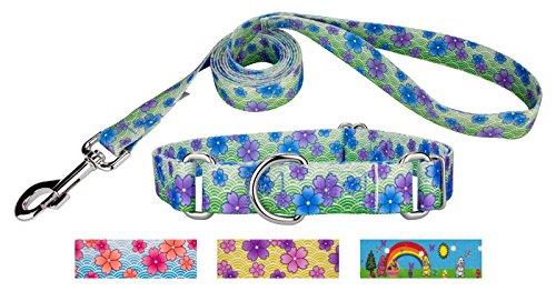 Country Brook Design Blue April Blossoms Martingale Dog Collar & Leash - Large