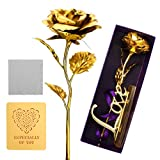 ProCIV Gold Roses, 24K Gold Foil Decoration Artificial Rose Flowers in Gift Box, Best Gift for Mother's Day, Valentine's Day, Wedding Day, Birthday, Christmas, Thanksgiving, Home Decor
