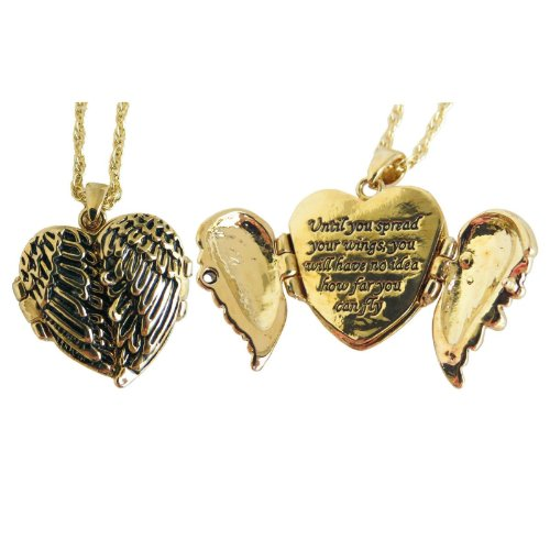 Evelots Gold Toned Angel Wings Pendant Until You Spread Your Wings, (Gold Angel Wing Pendant)