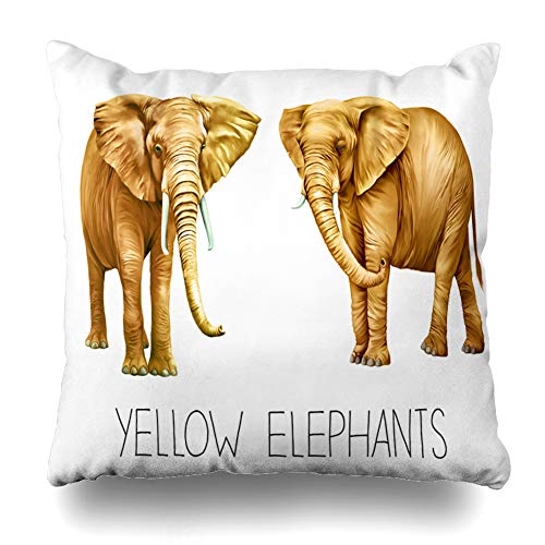 Ahawoso Decorative Throw Pillow Cover Nature White Yellow African Elephant Loxodonta Statuette Africana On Asia Asian Baby Design Friendly Home Decor Pillowcase Square Size 20