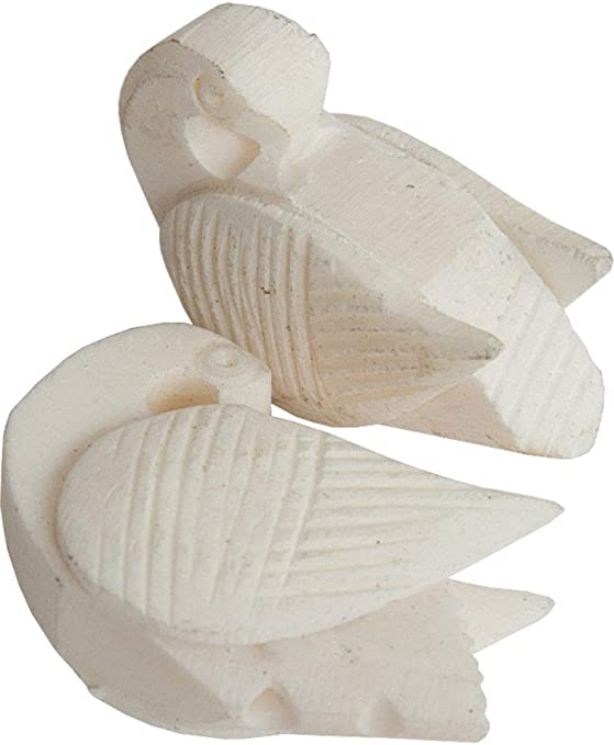 Amazon Com 20 Pcs Hand Carved Swan Tuning Bead Camel Bone For Indian Sitar Tanpura Sarod Sitar Tunning Bead Sitar Hand Carved Swan Tunning Beads Camle Bone Musical Instruments