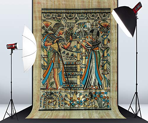 5ft x 7ft Ancient Egyptian Theme Color Illustrations Microfiber Photography Background for Photo Booth Studio Wedding Party Shot Backdrop Props ()