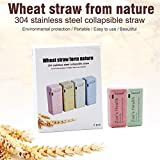 Zoe's Health Stainless Steel Collapsible Drinking Straw,Portable Reusable Drinking Straw,304 Stainless Steel,Medical-Grade,Food-Grade,BPA Free, Reusable,Wheat of Eco Friendly (Green+Pink)