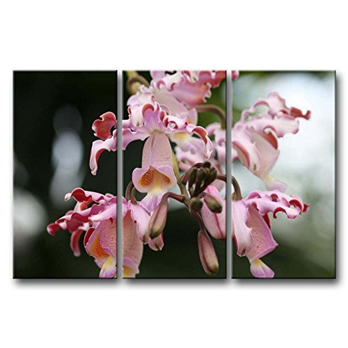 Pink Orchids 3 Pieces Panel Paintings Modern wall art