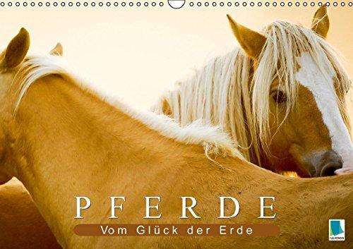Pferde: Vom Glück der Erde (Wandkalender 2015 DIN A3 quer): Im Galopp durch die Jahreszeiten (Monatskalender, 14 Seiten)