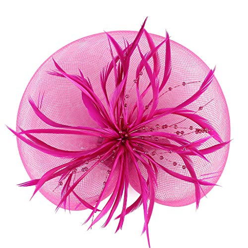 Price comparison product image BB67 Netting Feathers Big Flower Headband Party Girls Women Fascinator Headwear (Hot Pink)