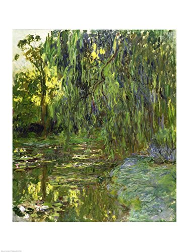 Weeping Willows, The Waterlily Pond at Giverny, c.1918 by Claude Monet Art Print, 15 x 20 - Lake Monet Claude Tree