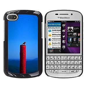 Shell-Star Arte & diseño plástico duro Fundas Cover Cubre Hard Case Cover para BlackBerry Q10 ( Spring Nature Bird Blue Red Robin )