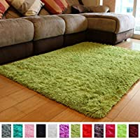 PAGISOFE Super Soft Comfy Shaggy Area Rugs for Bedrooms Living Room Fluffy Carpets Home Decor Floor Fur Rugs for Kids Nursery