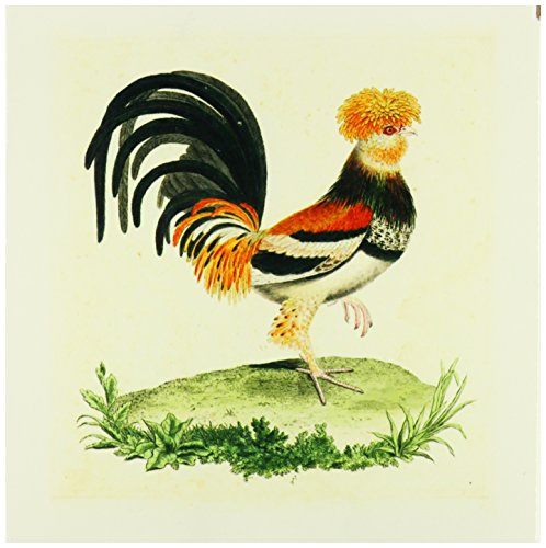 3dRose ct_62339_4 1770 French Vintage Rooster Print Ceramic Tile, 12-Inch