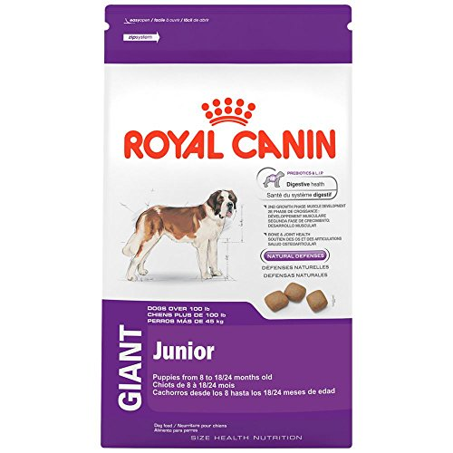 Royal Canin 1 Count Health Nutrition Giant Junior Dry Dog Food, 6 lb(Packaging may vary)