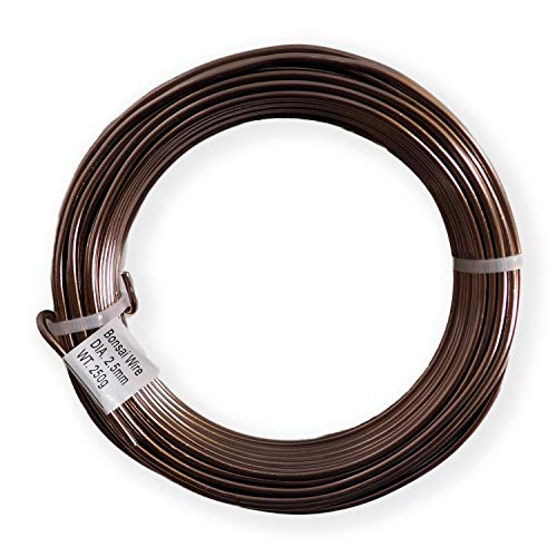 Anodized Aluminum 2.5mm Bonsai Training Wire 250g Large Roll (60 feet) - Choose Your Size Color (2.5mm, Brown)