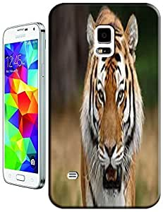 Tiger Case Cover Hard Back Cases Beautiful Nice Cute Animal hot selling cell phone cases for Samsung Galaxy S5 i9600 # 14