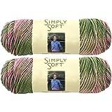 Bulk Buy: Caron Simply Soft Yarn Paints (2-pack) (Rose Garden)