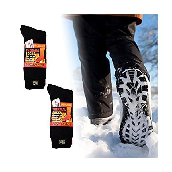 Polar Extreme Men's Thermal Sock Pack of 2
