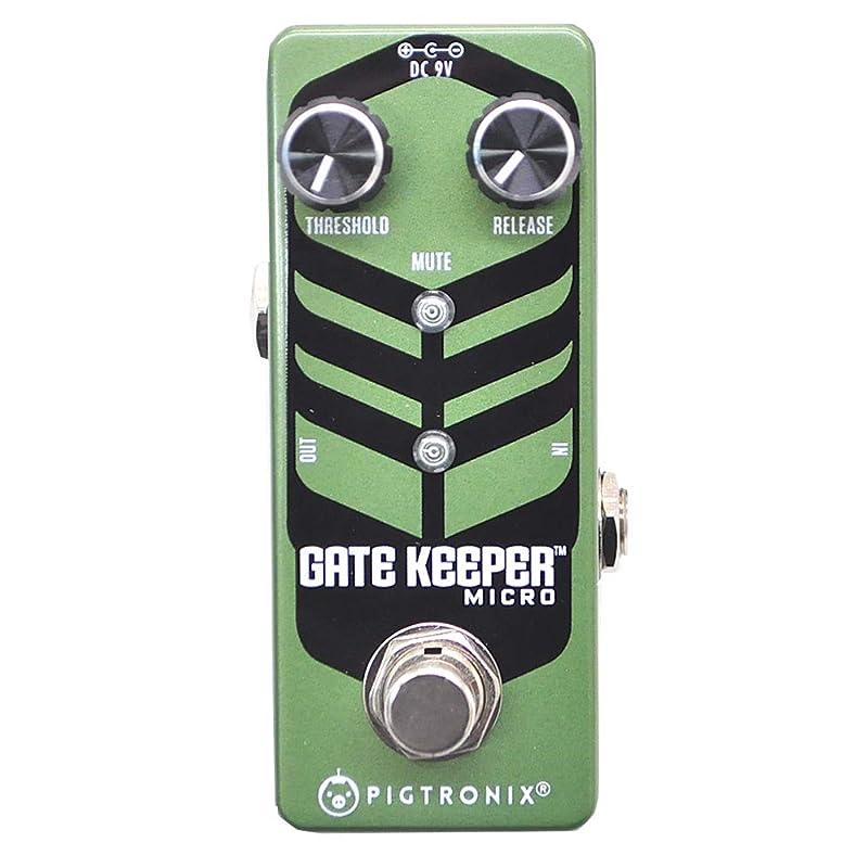 PiGtRONiX Gatekeeper Micro