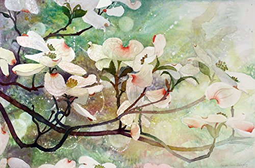 ARThouse Dogwood in Spring 1, Giclee Print of Watercolor, Dogwood Blossoms on a Branch, 14 X 21 Inches