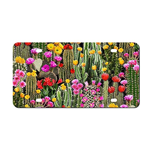 (DKISEE Abstract Southwest Cactus Floral License Plate Cover Aluminum Car Front License Plate)