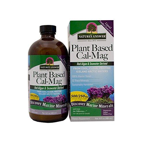 natures-answer-plant-based-calcium-magnesium-vanilla-cream-16-ounce