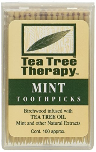 Tea Tree Therapy Tea Tree Toothpicks 100 Picks (Pack of 12)