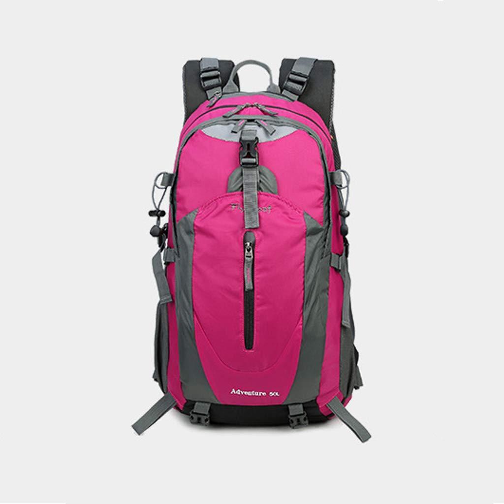屋外バックパック 新しい旅行バッグ防水涙防止スポーツ登山バッグハイキングユニセックスバックパックのアウトドアバックパック韓国語版 HBJP (色 : ピンク) B013547W0I ピンク