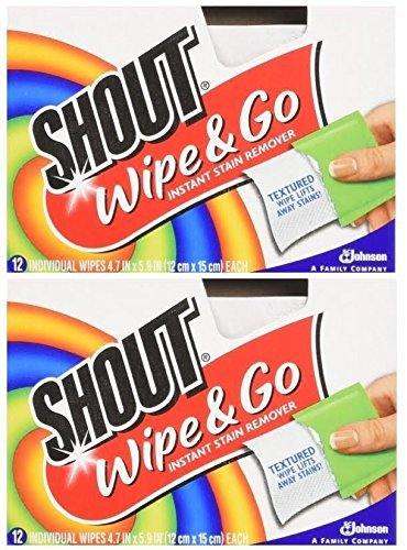 Shout Wipes - Portable Stain Treater Towelettes Pack of 2, 24 Wipes Count, Multicolor -