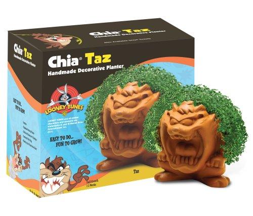 Chia Taz Collectable