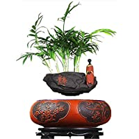 ZHIHUI Floating Bonsai Pot - Magnetic Suspension Levitating Air Flower Pots - Creative Design Levitation Bonsai - Home Office Decorations - Fun Gift