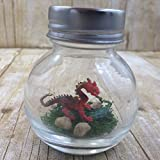 1 Inch Pet Dragon Red with Adoption Papers