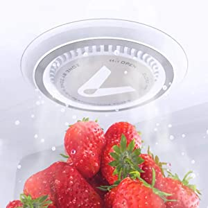 Kitchen Refrigerator Air Purifier Household Ozone Sterilizing Deodor Device Flavor Filter Core