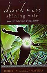Darkness Shining Wild: An Odyssey to the Heart of Hell & Beyond: Meditations on Sanity, Suffering, Spirituality, and Liberation