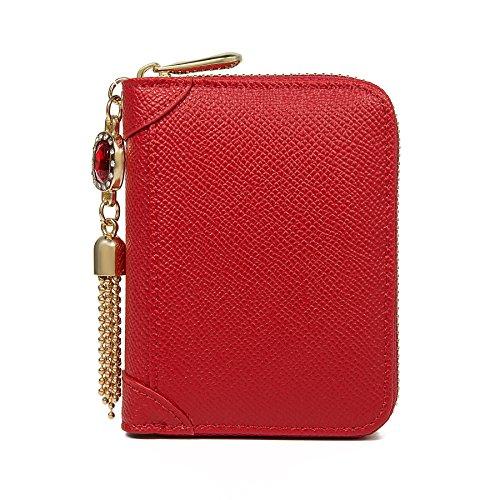 SafeCard Women's Credit Card Case Wallet 2 ID Window and Zipper Card Holder Purse (Red Jewel) -