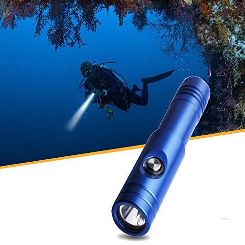 プロのダイビング懐中電灯、長距離アルミ合金、防水IPX-8、防水80M水中ダイビングライト B07QN4QQFY Blue  Blue