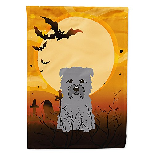 Caroline's Treasures BB4325GF Halloween Glen of Imal Grey Garden Size Flag, Small, Multicolor]()