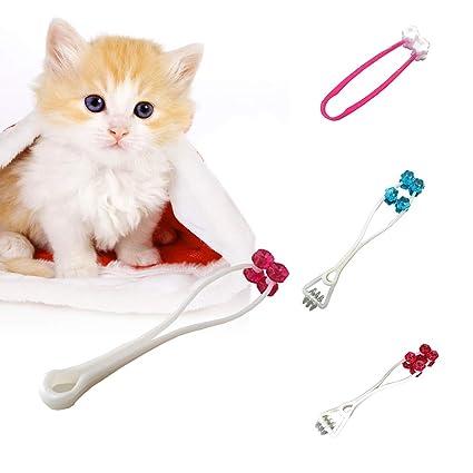Steellwingsf Masajeador de cara para gato, masajeador para gatos, herramienta de masaje, patas