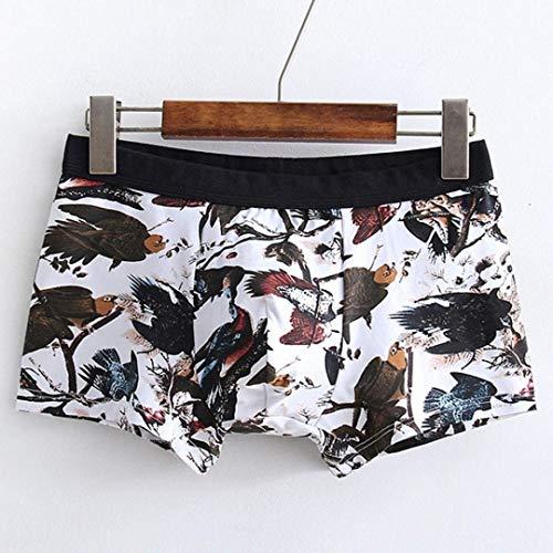 Laisla Classiche Bagno Mutande In C Pantaloncini Fashion Stampa Ragazzi Cotone Uomo Da Sotto Scaldavivande r8rRq0P