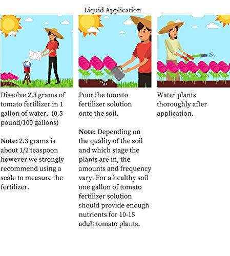 SHOPUS | Tomato Fertilizer 4-18-38 Powder 100% Water Soluble