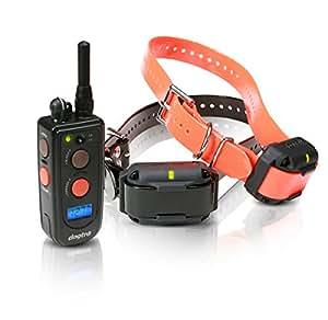 Amazon Com Dogtra 2 Dog Advance Training Collar Sports