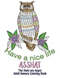 Have a Nice Life Asshat: The Owls are Angry Adult Sweary Coloring Book (Beautiful Adult Coloring Books) (Volume 12)