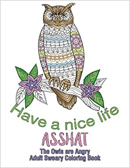 Amazon.com: Have a Nice Life Asshat: The Owls are Angry Adult Sweary ...
