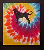 The Black Dog from Martha's Vineyard wall art created from an upcycled tie dyed kids tee shirt. The iconic Black Dog shirt turned into art!