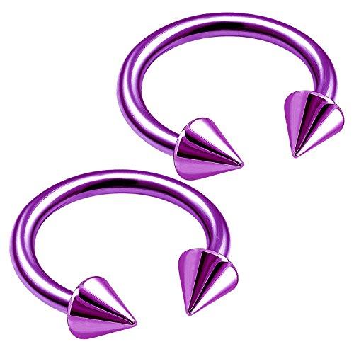 bodyjewellery 2pcs 16g Earing Horseshoe Purple Titanium Helix Eyebrow Bite Ear Cartilage Ring Nose Septum Lip Snake Tragus B2NCS