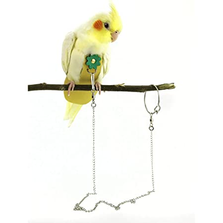 FairOnly Pa/ñal Casual para Mascotas p/ájaros Uso al Aire Libre para Loros
