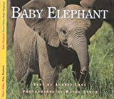 Baby Elephant, Aubrey Lang and Wayne Lynch, 1550417177
