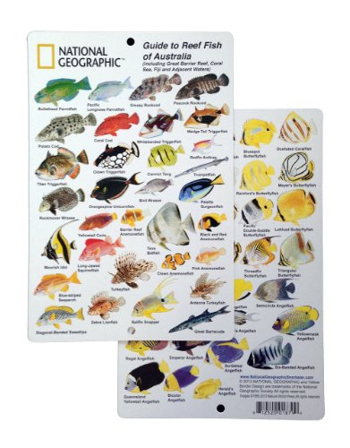 - National Geographic - Guide to Reef fish of Australia - Fish ID Card (6 in by 9 in)