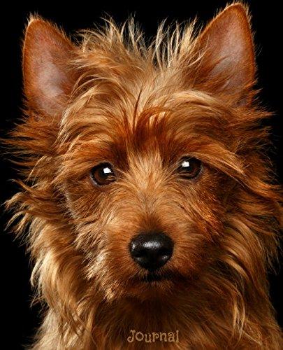 Journal: Australian Terrier