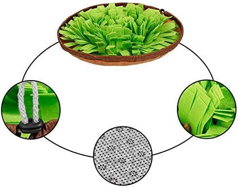 Bangoo Alimentador de Comida Lenta y Duradero y ecol/ógico Alimentador de Comida Lenta fomenta Las Habilidades de alimentaci/ón Natural para Perros Juguetes para aliviar el estr/és